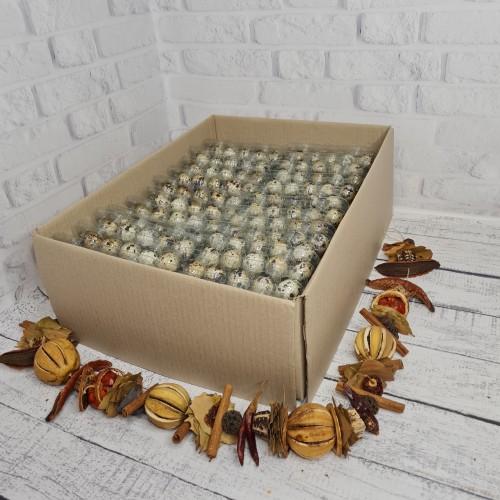 Яйца перепелиные 1 Ящик - 26 лотков (520 яиц )